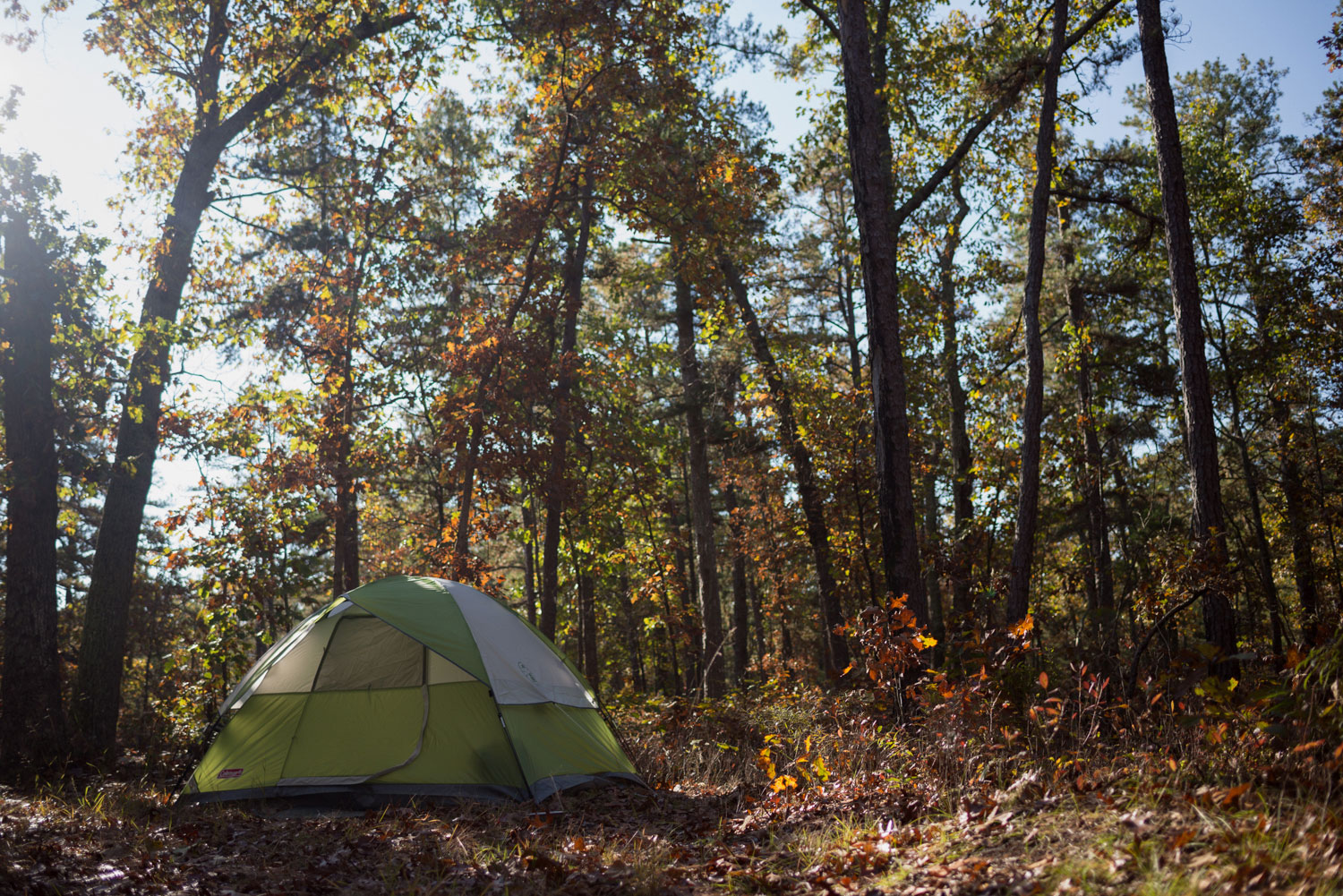 Camping in the Pine Barrens - Pinelands Preservation Alliance