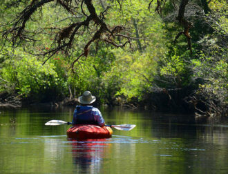 Kayaker explores a section of the Batsto River with Pinelands Adventures