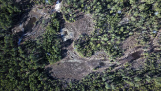 off road vehicle abuse in the new jersey pinelands pine barrens