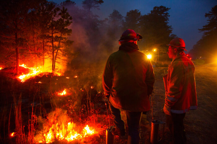 firefighters at a prescribed burn fire