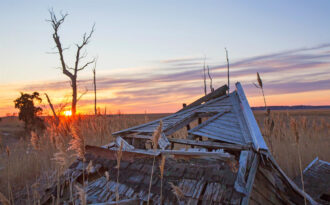 Remains of the Day by Steve Frates