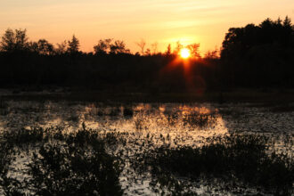 Sunset over the Atsion Bogs, Shamong by Kenneth Hess