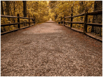 Autumn Trails by Bruce Himelman