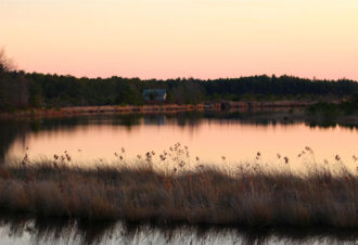 Cranberry Bog in Winter by Crystal Inman