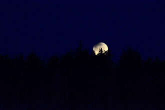 Moonset by William McLennan