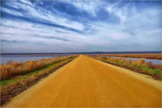 Follow the Yellow dirt road by Lynn Padwee
