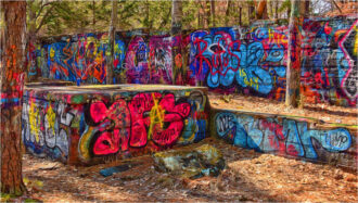 Graffiti in the forest by Lynn Padwee
