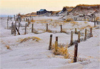 the Beach in winter by Lynn Padwee