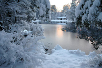 After the Snow Storm at Pakim Pond by Joanna Patterson