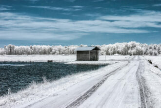 Whitesbog in Infrared by Neil Persh