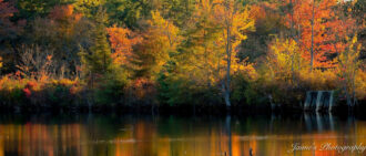 Fall Reflections by Jaime Philpot