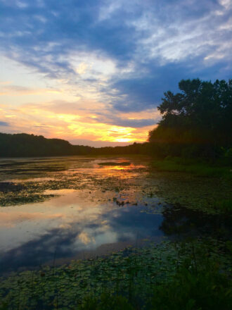 Where Does the Sunset End or Begin by Jennifer Plaia