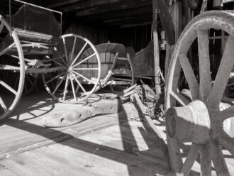 Carriages by Carla Rocha