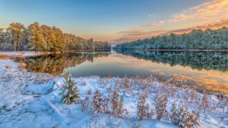 Frosty Morning by Stephen Rulli