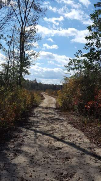 Follow the sugar sand road by Janet S Schmidt