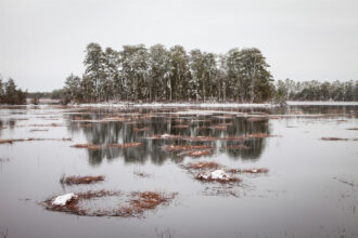 Reflection of Winter by Kristin Snyder