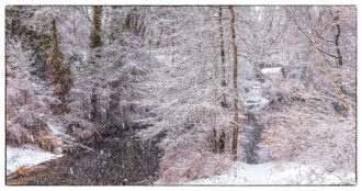 Winter's Storm by Patricia Worley