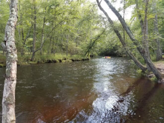 Tubing on the Great Egg Harbor River by Dave Davis