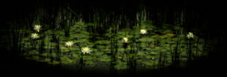 Water Lillies by John Giatropoulos
