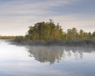 Early Morning Fog by Virginia Rice