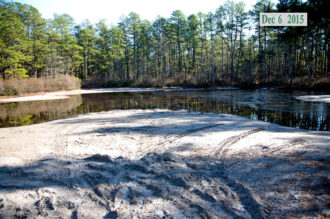 orv damage to wetland in new jersey pine barrens